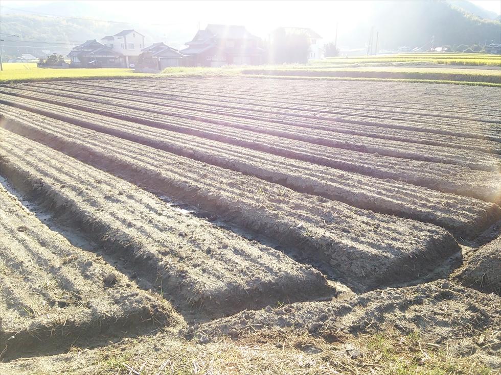 農業支援事業